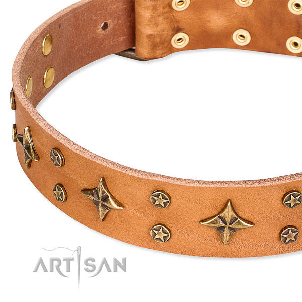 Easy to fit tan leather dog collar