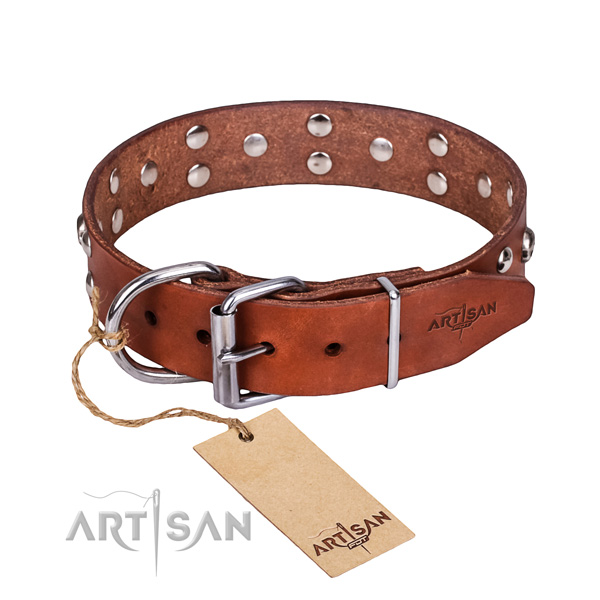 Tan leather dog collar with riveted buckle