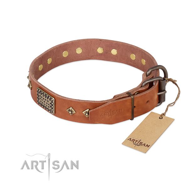 Sturdy tan leather dog collar