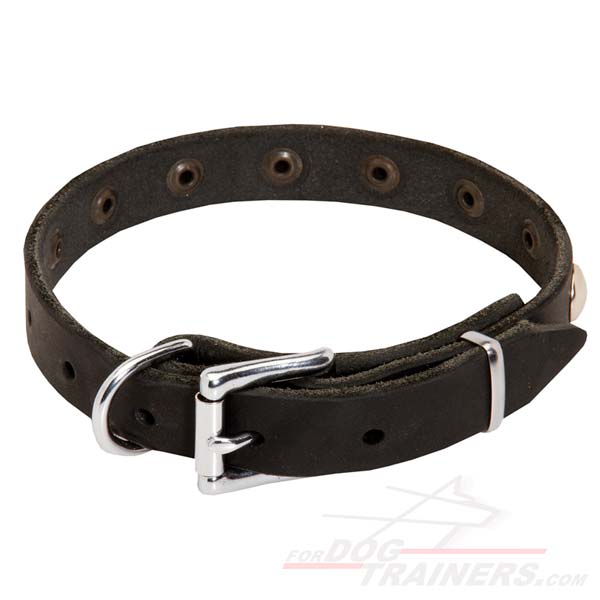 Leather Collar with Reliable Buckle