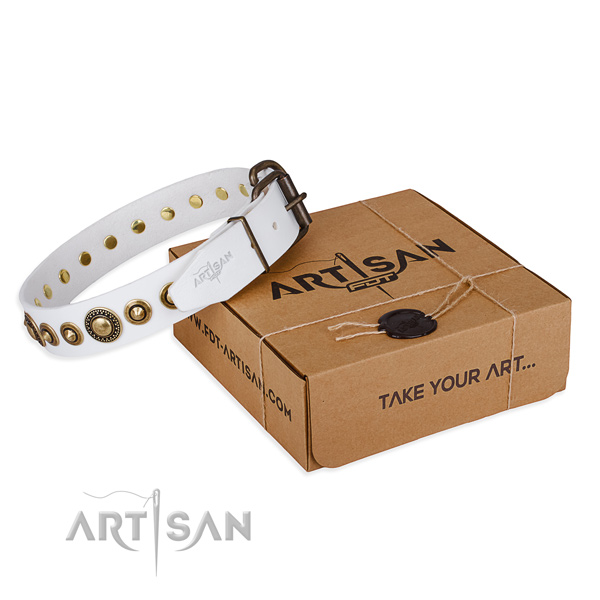 White leather dog collar with fashionable studs