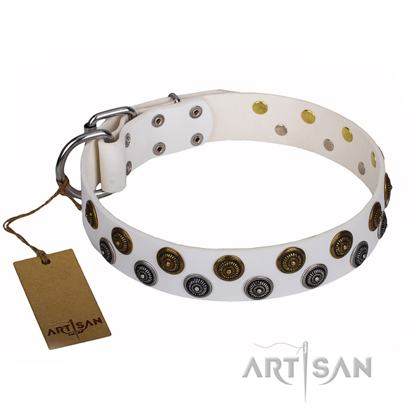 White leather dog collar with glamorous studs