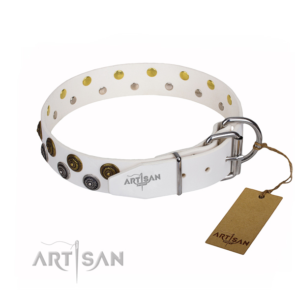 White leather dog collar with sturdy fittings