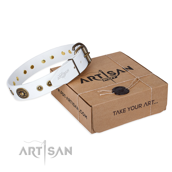 White leather dog collar with exciting adornments