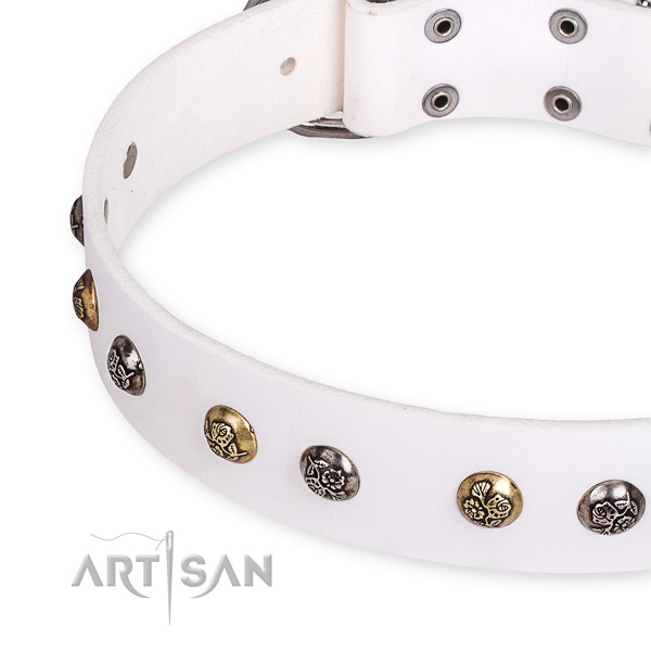 White leather dog collar with riveted decorations