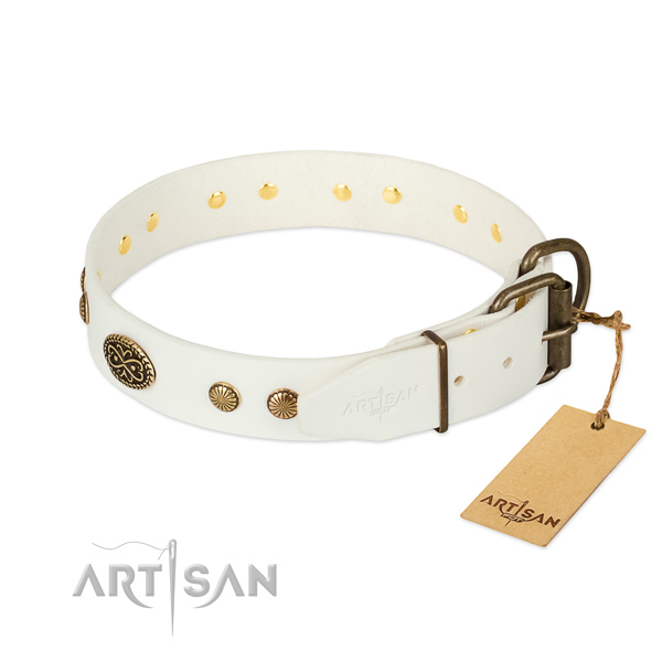 White leather dog collar with old bronze-like plated fittings
