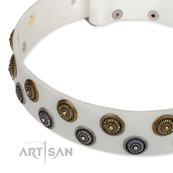 White leather dog collar with rust-proof studs