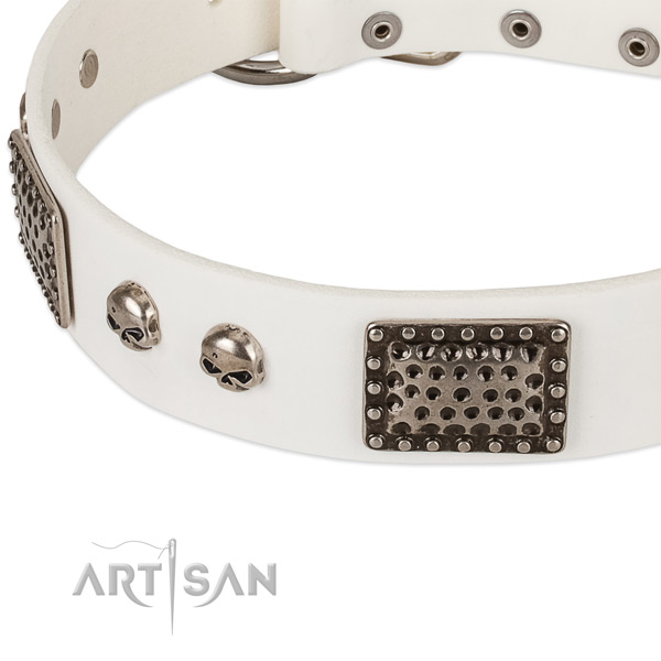 White leather dog collar for fashion strolling