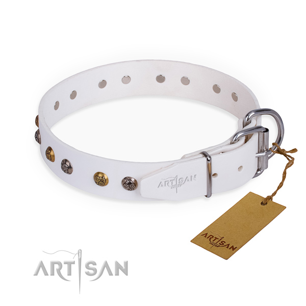 White leather dog collar with chrome plated fittings