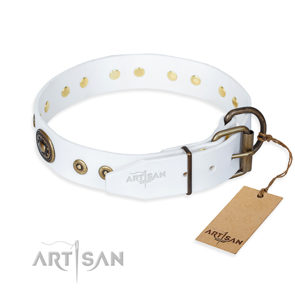 White leather dog collar with strong hardware