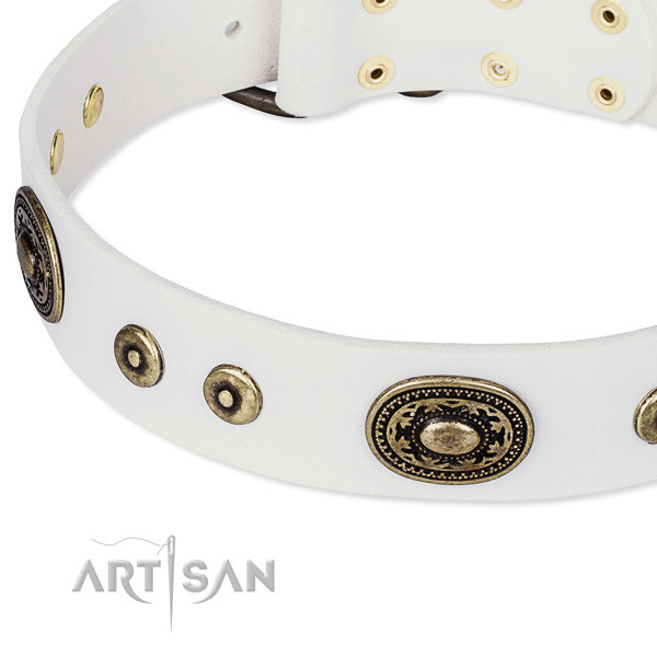 White leather dog collar with hand set decorations