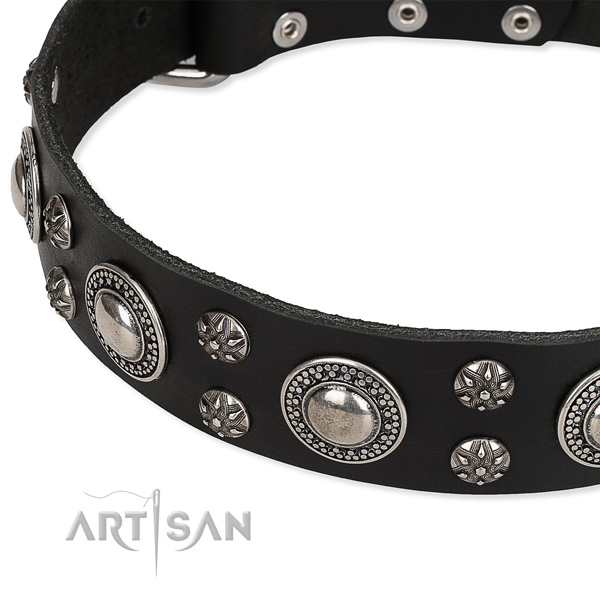 Elegant black leather dog collar with decorations
