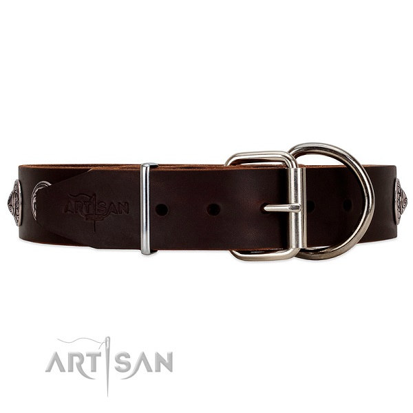 Brown leather dog collar equipped with reliable fastener