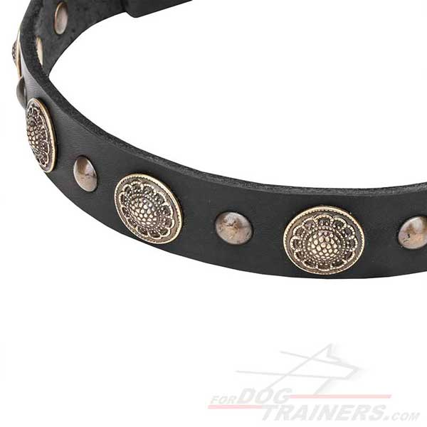 Rust-resistant fittings on leather dog collar