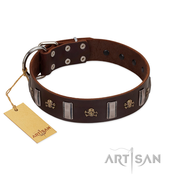 Exclusive FDT Artisan brown leather dog collar