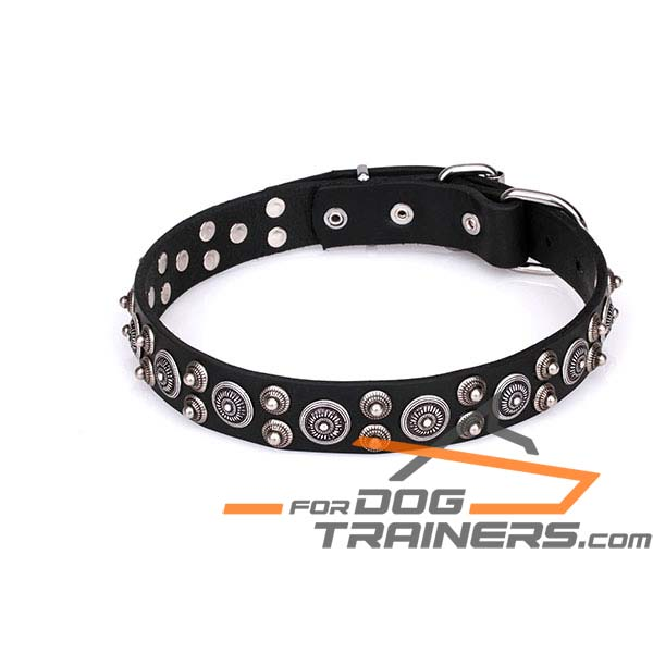 Adorned with Studs Leather Dog Collar