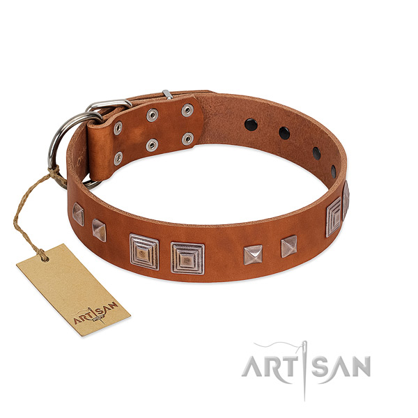 Stylish tan leather dog collar of strong materials