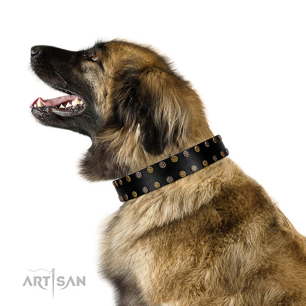 Exquisite Design Leather Leonberger Collar with Stars