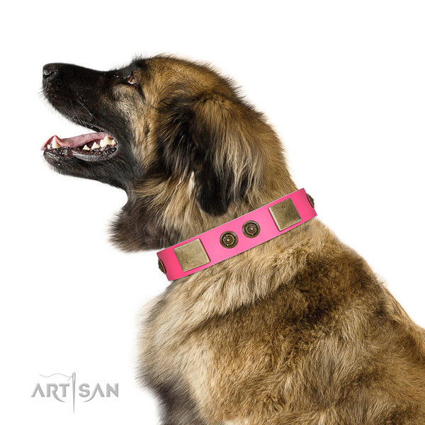 Unusual Design Pink Leather FDT Artisan Leonberger Collar