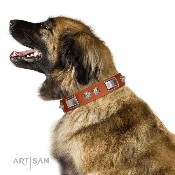 Handcrafted walking leather Leonberger collar