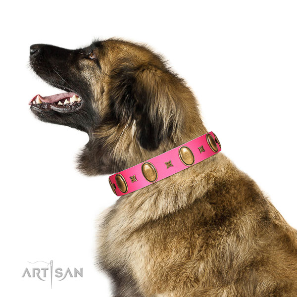Pink leather Leonberger collar with chic decorations