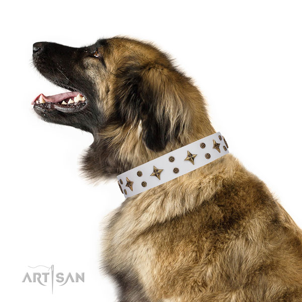 Leonberger remarkable natural genuine leather dog collar with decorations