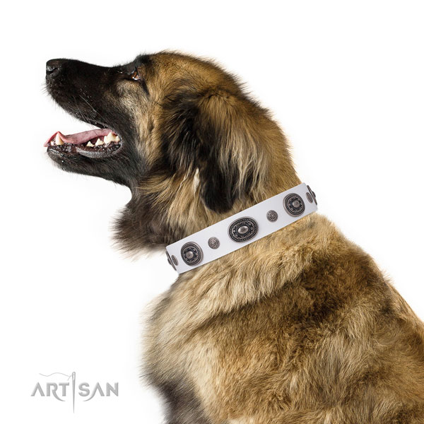 Leonberger designer natural genuine leather dog collar with decorations