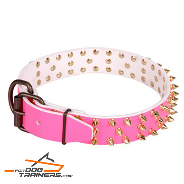 Decorated leather collar for comfortable walking