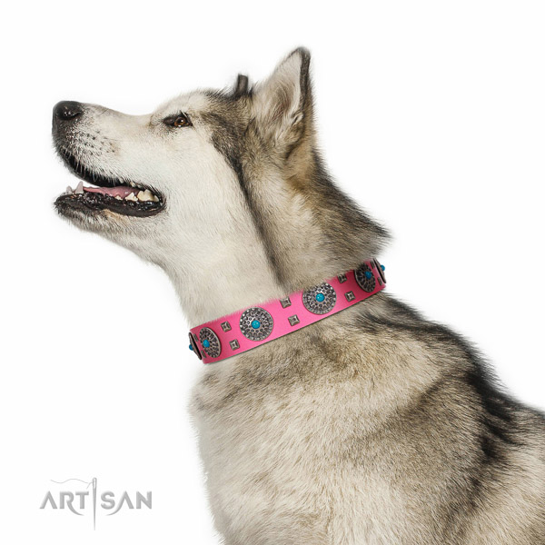 Everyday walking pink leather Malamute collar with luxury decorations