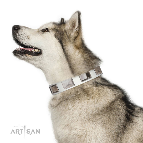 Handcrafted walking leather Malamute collar
