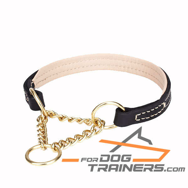 Martingale Dog Collar with Strong Chain