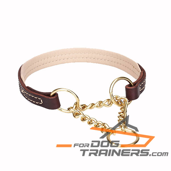 Sturdy martingale brown leather dog collar