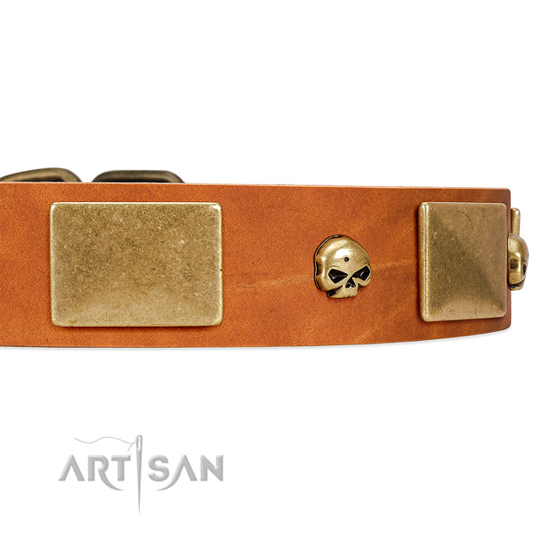 Premium Quality Leather Dog Collar with Handset Skulls and Massive Plates