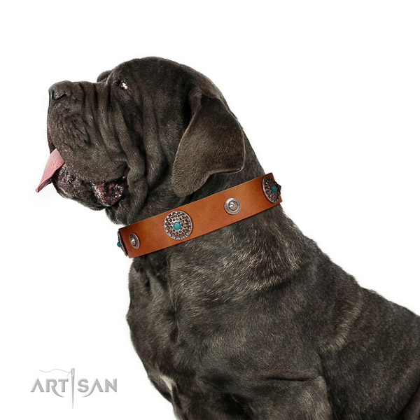 Extraordinary walking tan leather Mastino Neapolitano