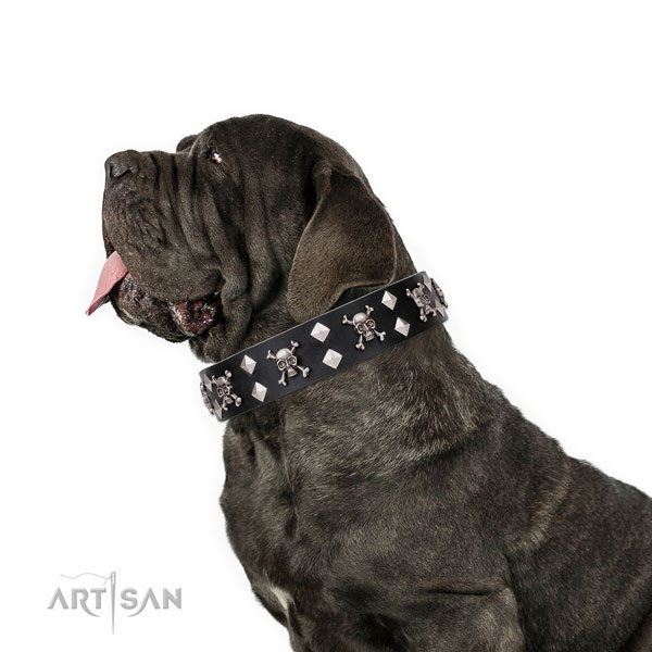 Mastino Neapoletano comfortable full grain genuine leather dog collar with decorations