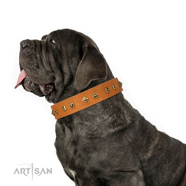 Mastino Neapoletano basic training dog collar of exquisite quality leather