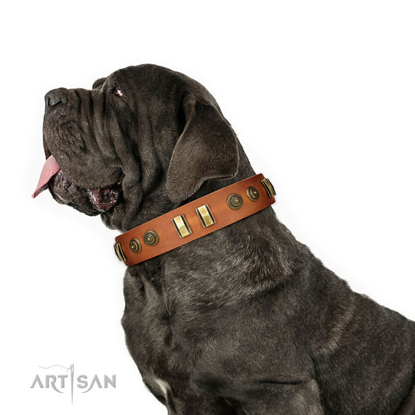Mastino Neapoletano fancy walking dog collar of stylish natural leather