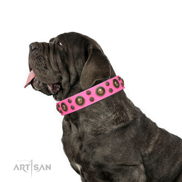 Mastino Neapoletano fine quality full grain genuine leather dog collar with decorations