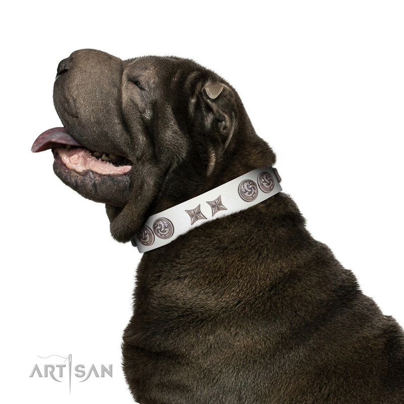 Walking top-notch quality walking leather dog collar for Shar Pei