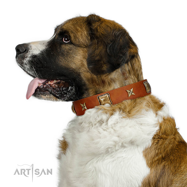 Wonderful Artisan leather Moscow Watchdog collar for
