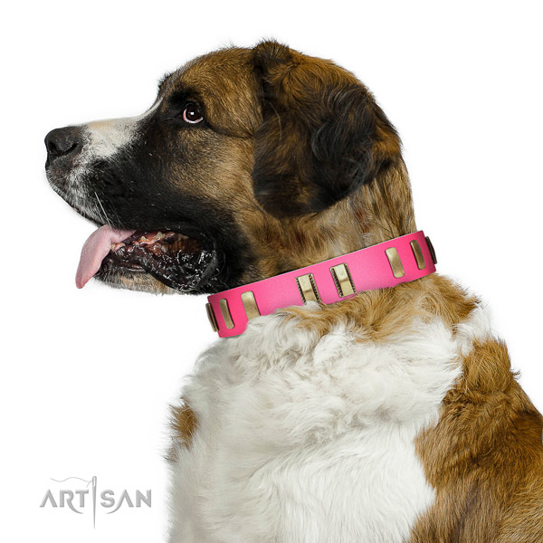 Moscow Watchdog fancy walking dog collar of natural