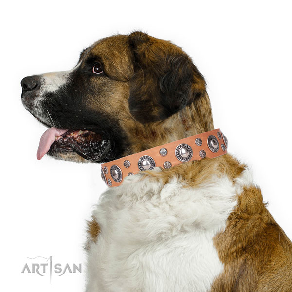 Moscow Watchdog fine quality full grain genuine leather dog collar with adornments