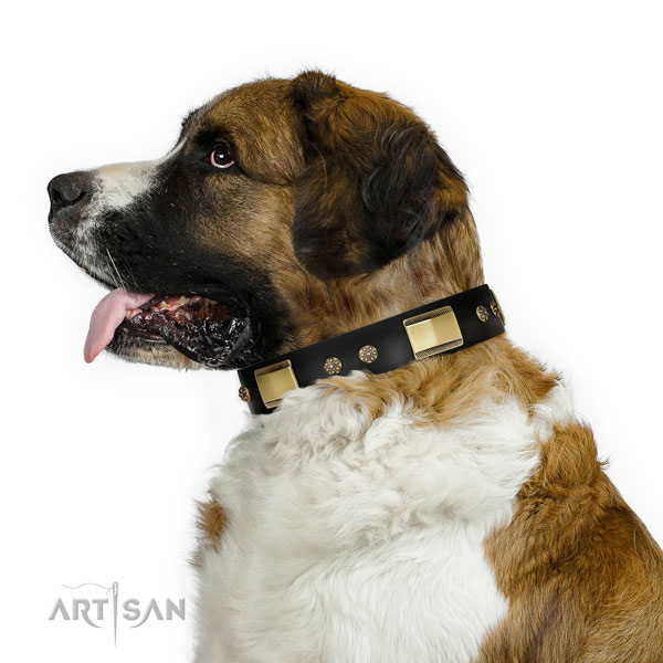 Moscow Watchdog stylish walking dog collar of remarkable quality genuine leather