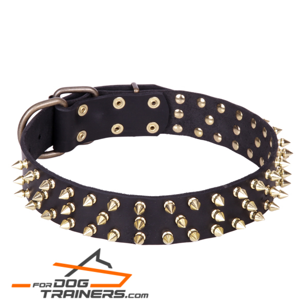 """Black Super Star"" Leather Dog Collar with Brass Decorations"