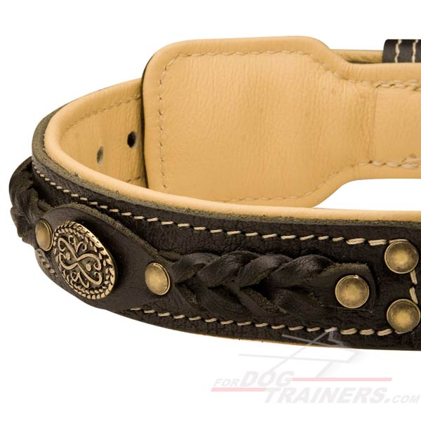 Super Comfortable Dog Collar Leather with Inside Padding