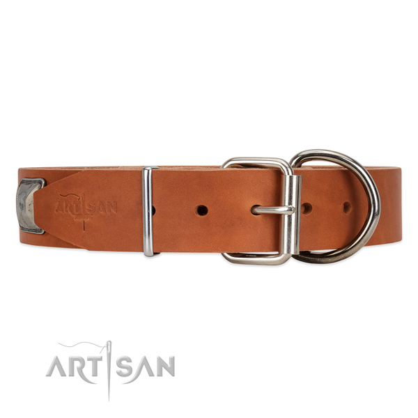 Leather dog collar with old silver-like hardware