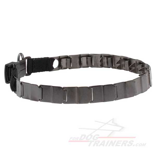 Stainless steel pinch collar for your dog