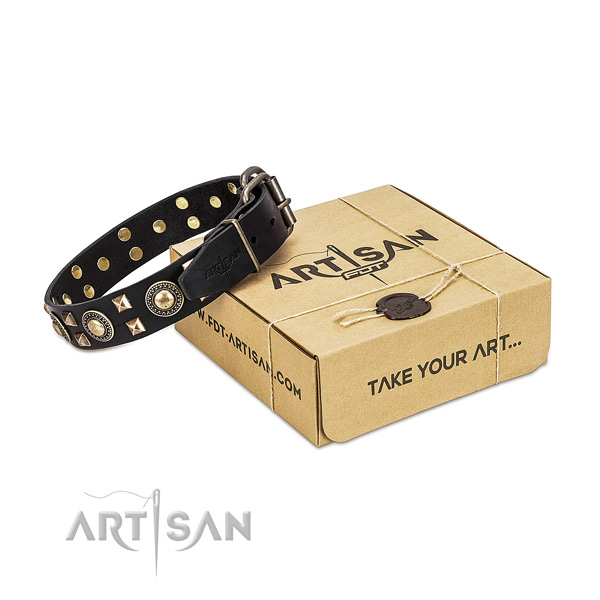 FDT Artisan leather dog collar for your best dog