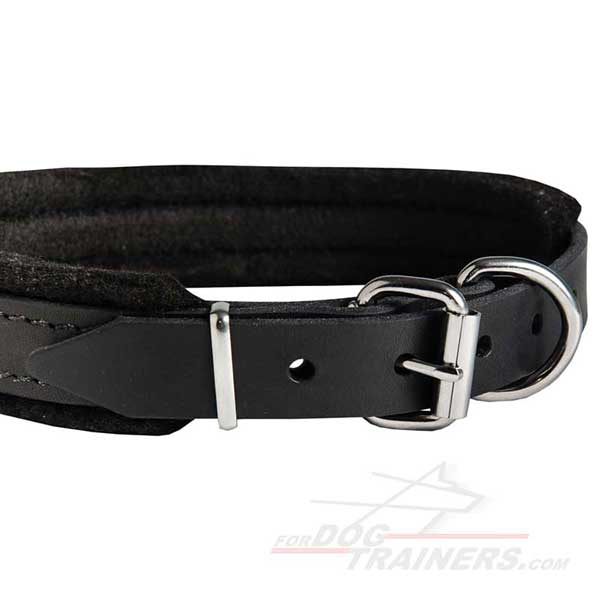 Nickel Fittings of Leather Training Dog Collar