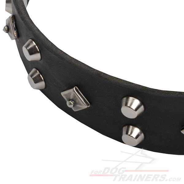 Silver-like Pyramids and Nickel Studs Riveted to Walking Dog Leather Collar